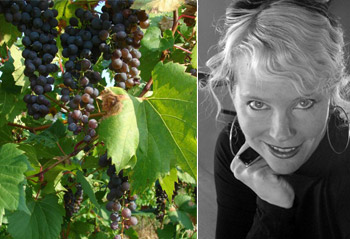 Grapes at La Garagista; Deirdre Heekin