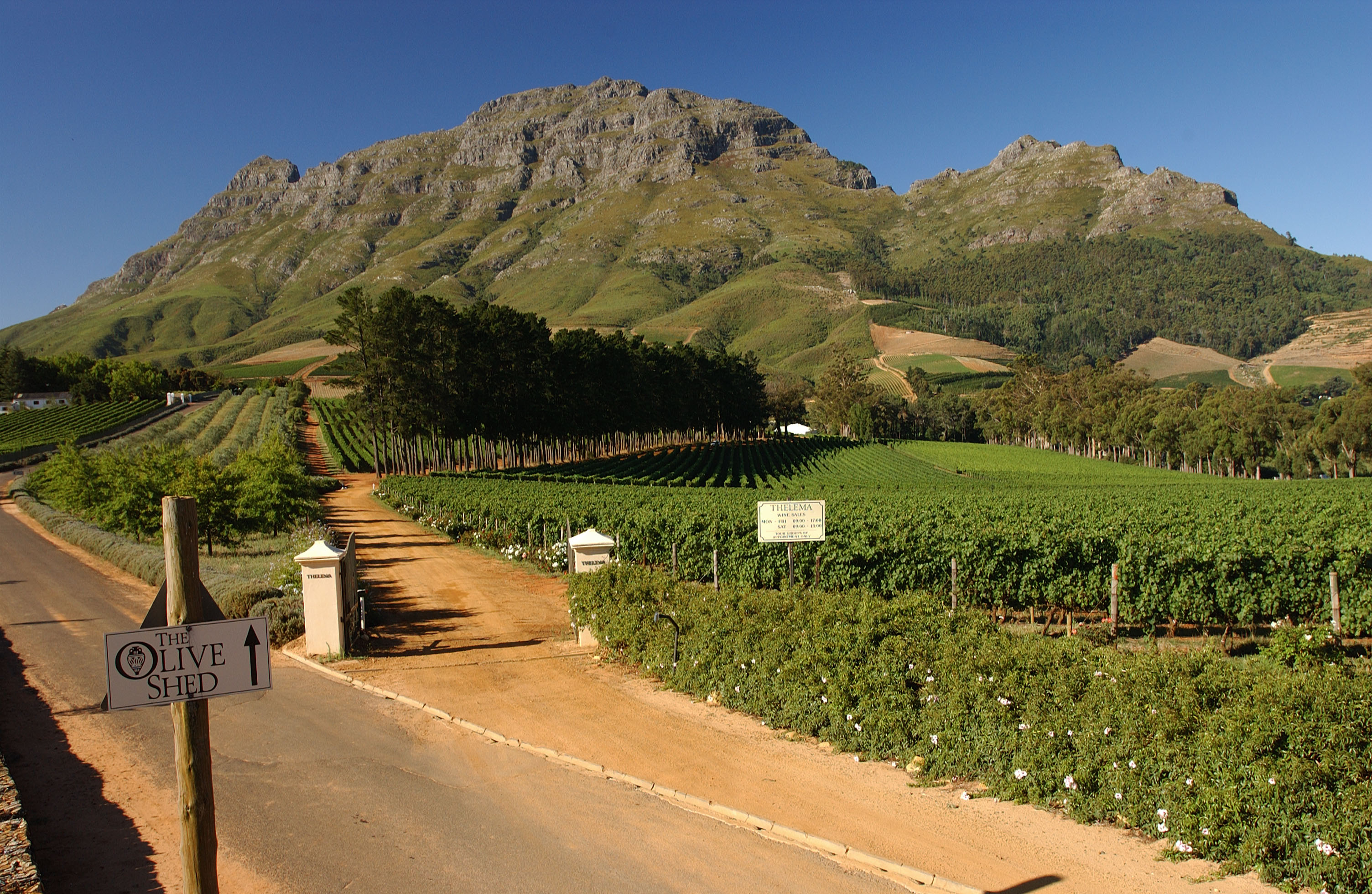 South africa exploring wines of the rainbow nation for Jardin wine south africa