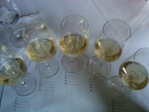 Sauternes+Barsac, blind tasting