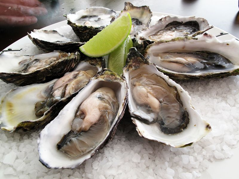 By Guido (Flickr: Pacific oysters) [CC-BY-SA-2.0 (http://creativecommons.org/licenses/by-sa/2.0)], via Wikimedia Commons