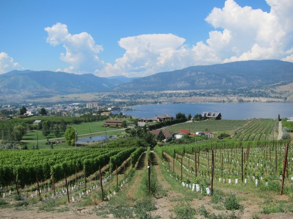 The view of Lake Okanagan from Poplar Grove winery in Penticton, British Columbia
