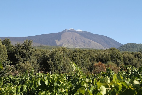 Vineyards with Etna behind