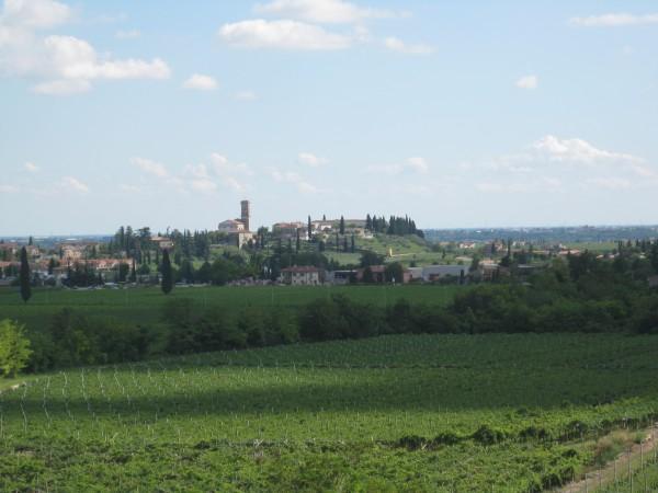 Valpolicella, a view