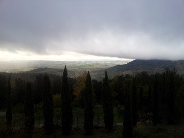 The countryside near Montalcino - 3