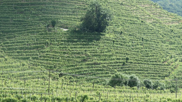 steepy slopes at marsuret1