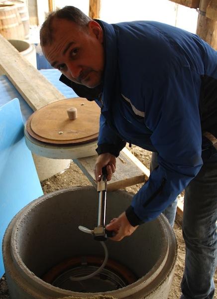 landauer gisperg - amphora being opened