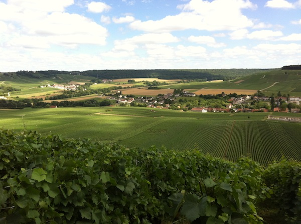 steep slopes of the vallee de la marne