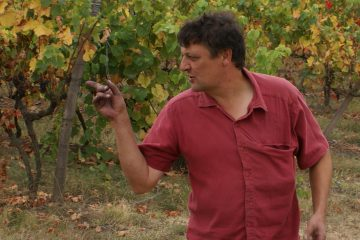 Frederic Ribes - Domaine Le Roc