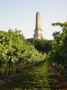 Custoza, monument and vines
