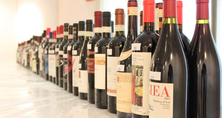 a sea of barbera
