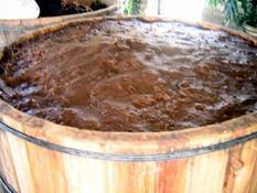 Slowly fermenting tepache