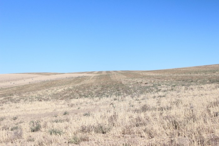 A typical view on the drive from Prosser to Horse Heaven Hills