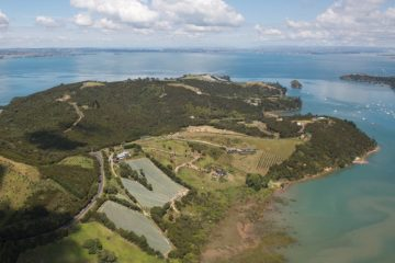 AUGUSTE PATRES VINEYARD, WAIHEKE ISLAND, NEW ZEALAND