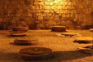 The amphora cellar at Gravner