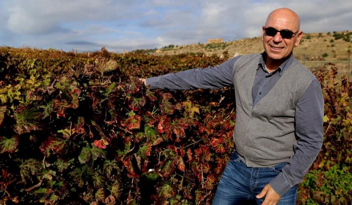 diodoros-calogero-liotta-vineyard