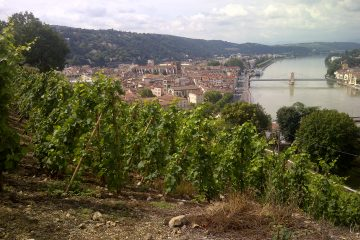 Seysseul Vineyards overlooking Rhone