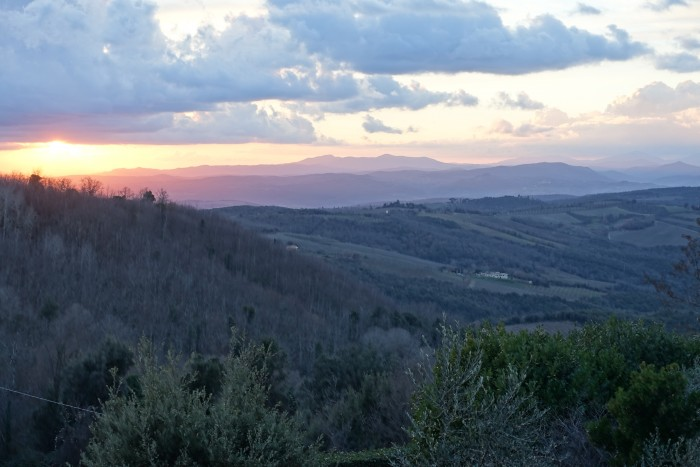 Sunset for colorino -- tuscan hills