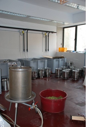 Cellar for microvinification at VITEC (photo: vitec.cat)