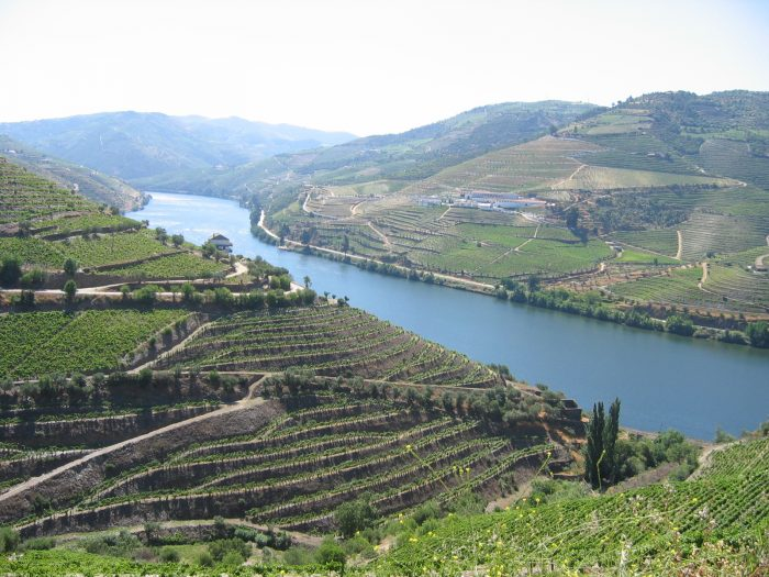 Terraced vineyards along the Duoro in Portugal