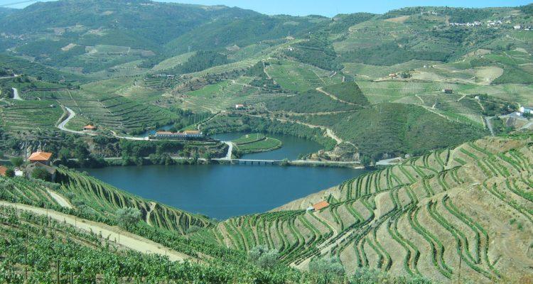 douro-terraced-vineyards
