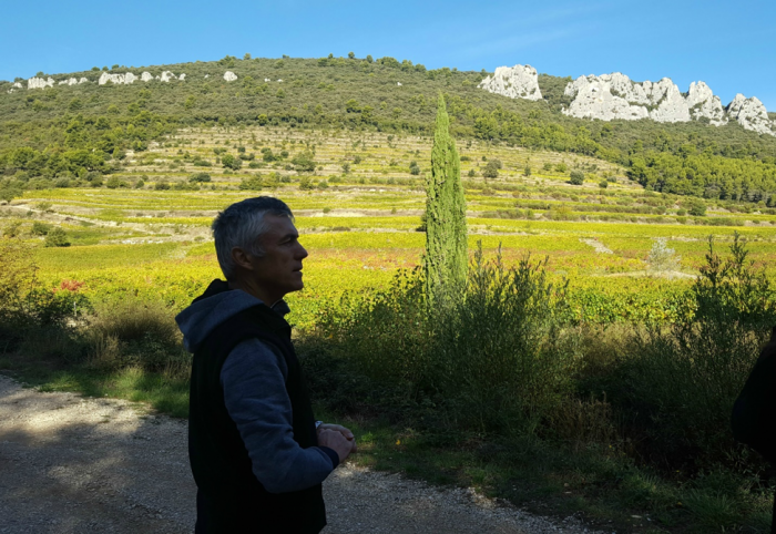 Domaine Fenouillet winemaker Patrick Soard explains the terraces of the Dentelles de Montmirail.