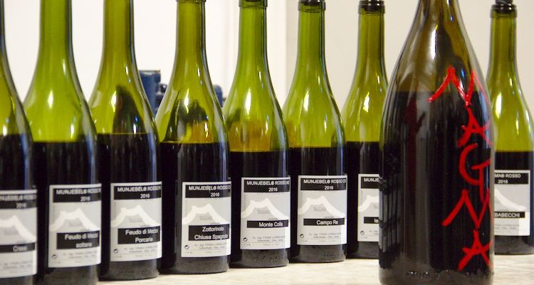 Frank Cornelissen's nine single contrada wines (Photo Simon Woolf)
